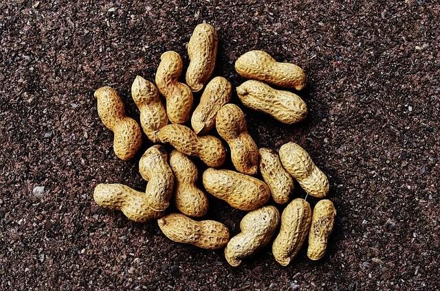арахис вред и польза