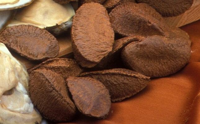 бразильский орех зерна