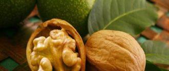 Как отмыть руки от зеленого грецкого ореха