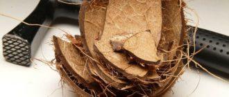 как рзбить и расколоть кокос