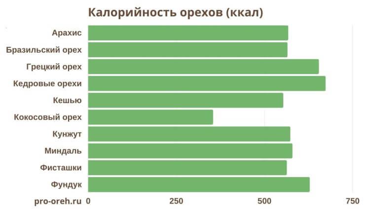 калорийность орехов инфографика