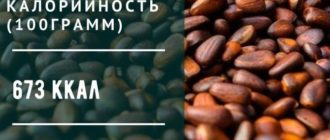 калорийность кедровых орехов