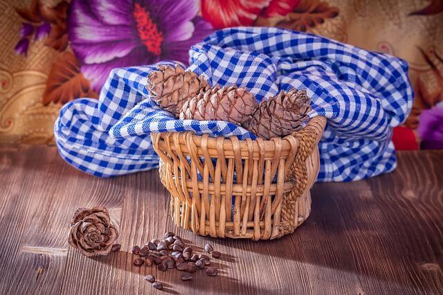 кедровые орехи польза