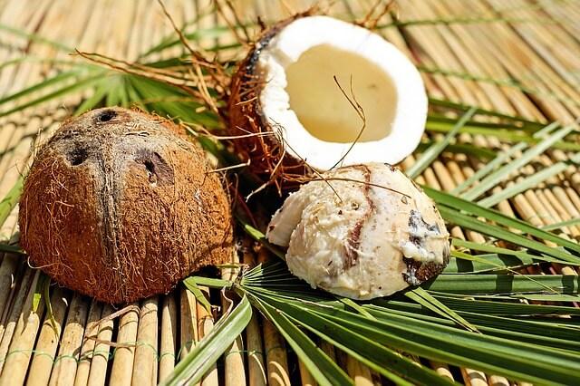 кокос фрукт или орех