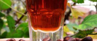 настойка на водке из кедровых орехов