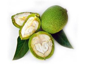 полезные свойства зеленого грецкого ореха